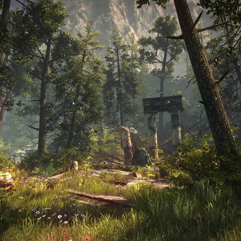 Imagen de The Forest PC número 2